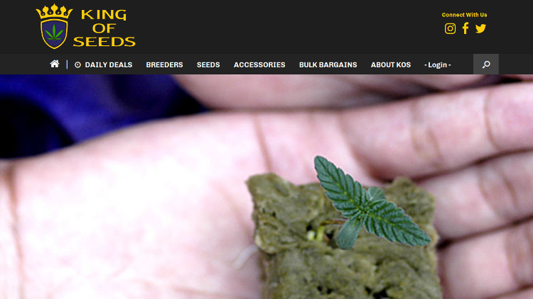Kingofseeds.com website screenshot